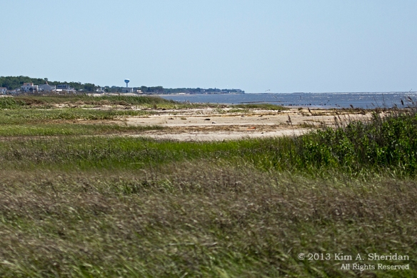 4 Cooks Beach_0437 a