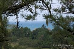 Skyline Trail, Ludington State Park, Michigan