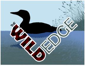 Wild Edge Banner 4