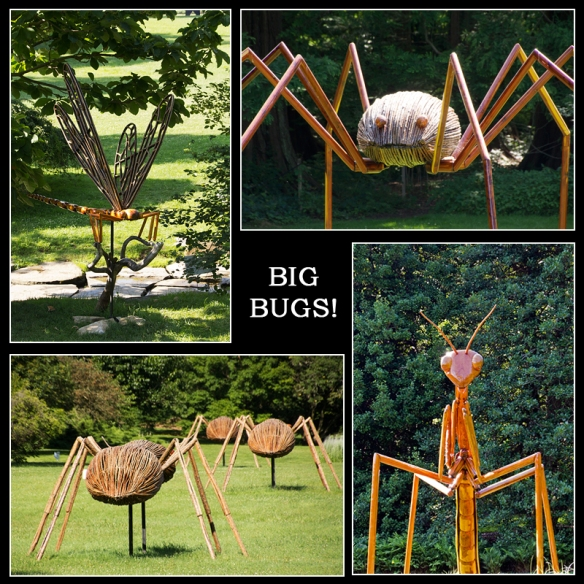 Bug Collage