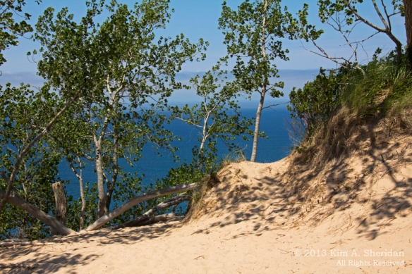 09  A MI Sleeping Bear Dunes_6718 a