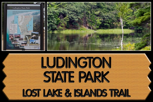 Ludington Collage 3