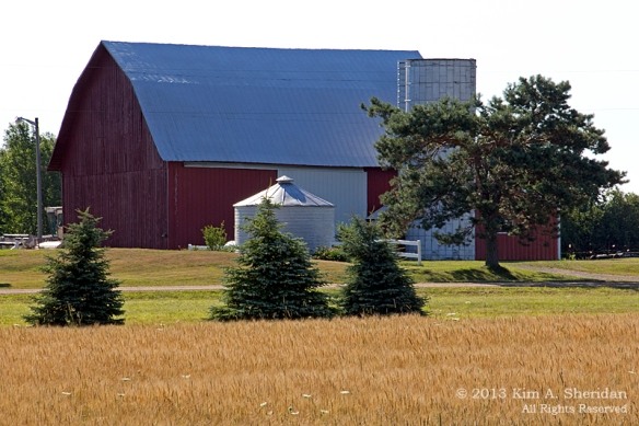 MI Farm Country_7577a
