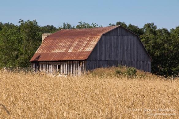 MI Farm Country_7610a