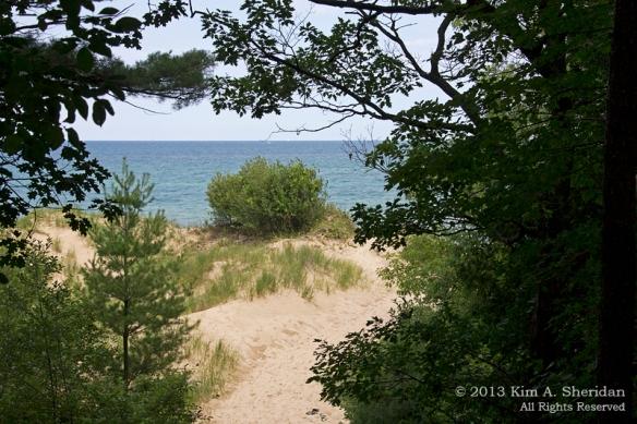 MI Nordhouse Dunes Lake & Dune_5838 a