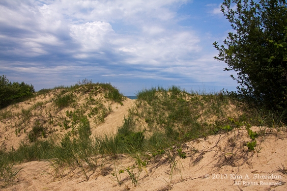 MI Nordhouse Dunes Lake & Dune_5846 a