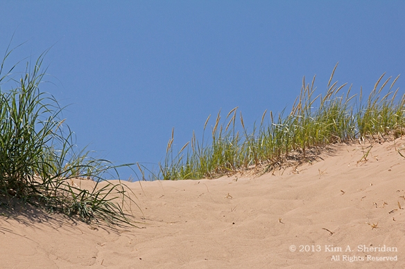 MI Sleeping Bear Dunes_6846ac