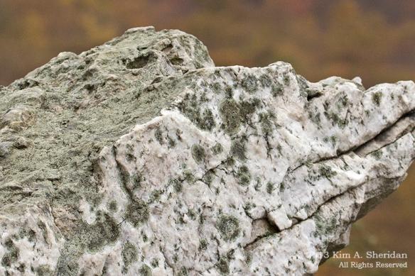 Hawk Mountain Rock_0422a
