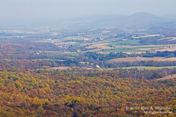 Hawk Mountain_0804a