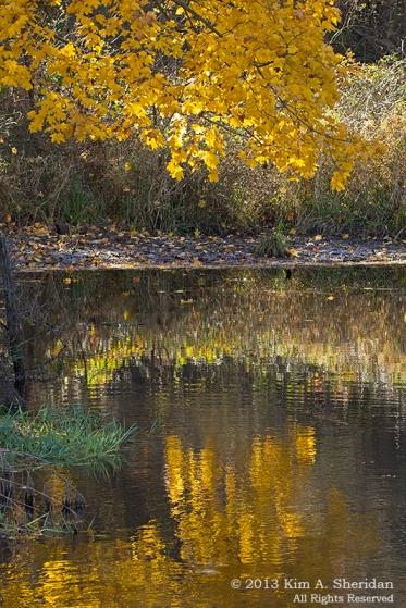 Marsh Creek_1999