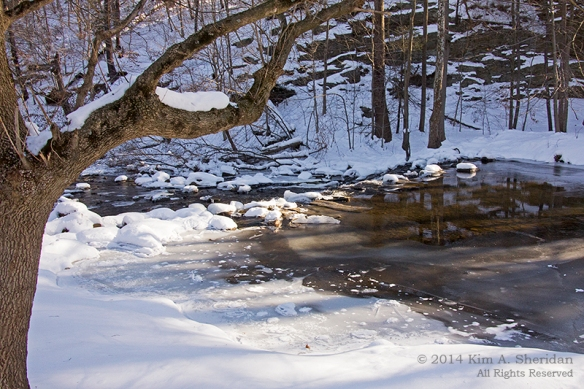 Smedley Snow_9711a