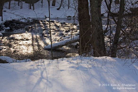 Smedley Snow_9722a2