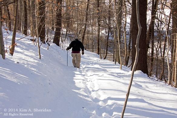 Smedley Snow_9901acs