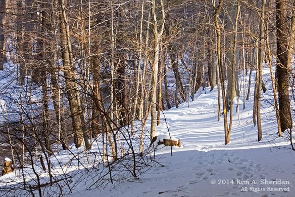 Smedley Snow_9907a