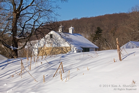 01 Valley Forge Farm_ 2323a