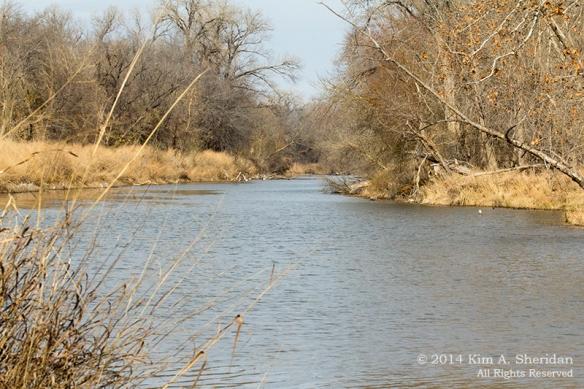 Fort Worth NCR Landscape_8108 a