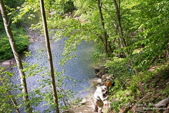Wissahickon 6 Trail_9772a