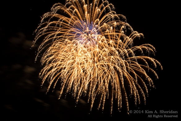 MI Fireworks_2001a