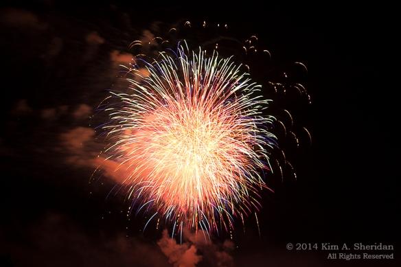 MI Fireworks_2007a