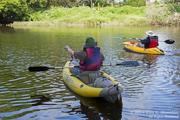 140906_HNWR Kayak_8998a