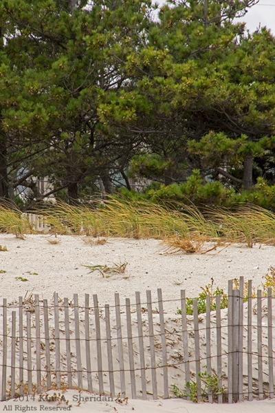 140924_OC Stormy Beach_2870acs