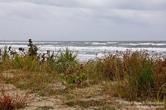 140924_OC Stormy Beach_2899acs
