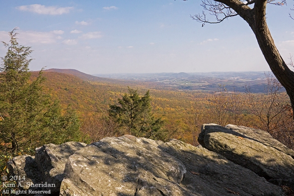 141025_Hawk Mountain_1962a