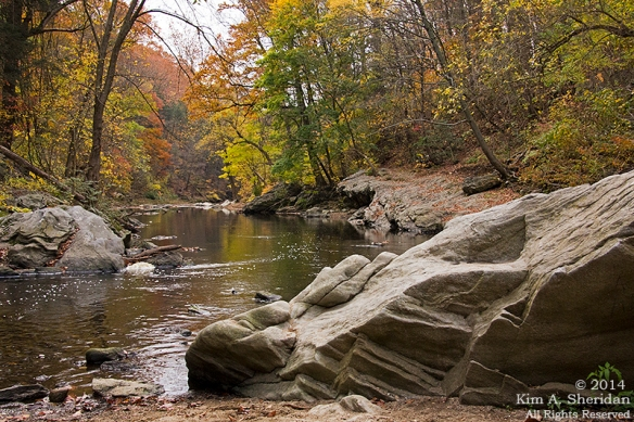 141031_Wissahickon Autumn_2638a