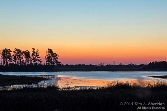 141018_Chincoteague NWR AM Sunrise_9922acs