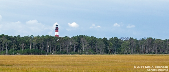 141019_Chincoteague NWR Lighthouse_1161acs