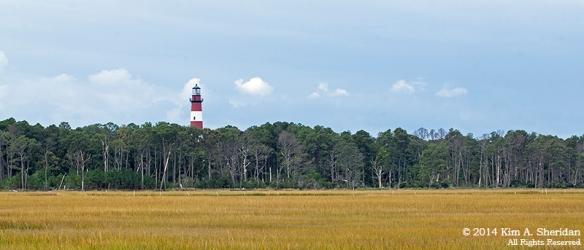 141019_Chincoteague NWR Lighthouse_1161acs