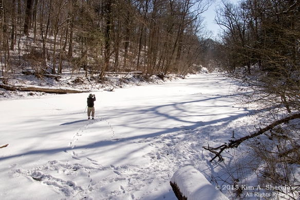 150218_Wissahickon In Snow_6600a