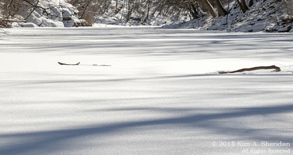 150218_Wissahickon In Snow_6624a