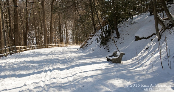 150218_Wissahickon In Snow_6807acs