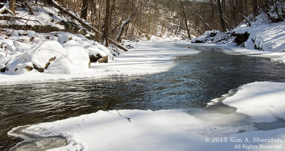 150218_Wissahickon In Snow_7153a