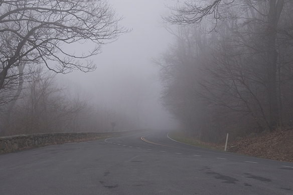 Day 1: Fog in Shenandoah National Park
