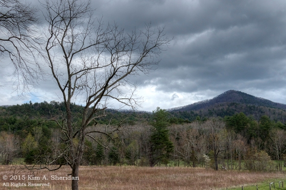 150413_TN GSMNP Cades Cove_4306_HDR acs copy