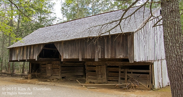 150413_TN GSMNP Cades Cove_4348 acs