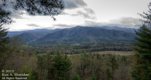 150413_TN GSMNP Rich Mountain Road_4462_HDR acs copy