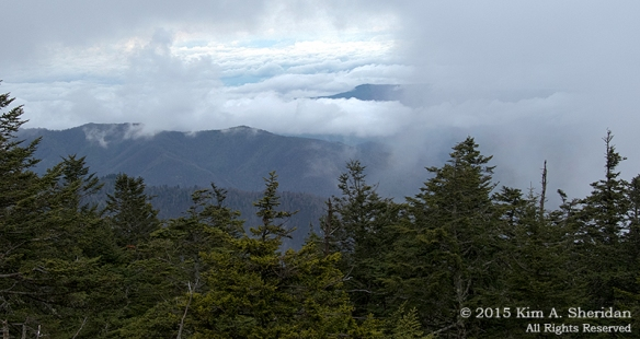 Day 10: Atop Clingman's Dome, Great Smoky Mountains National Park