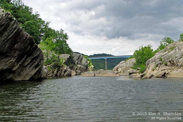 150417_PA Susquehanna Conowingo Pool_0350acs