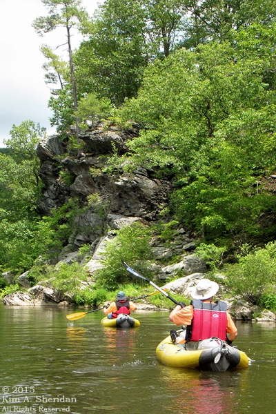 150417_PA Susquehanna Conowingo Pool_0464acs