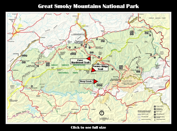Map GSMNP Wildflowers & Woods