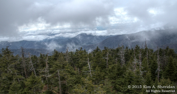 150417_NC GSMNP Clingmans Dome_5521-5_HDR acs copy