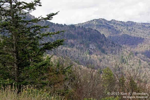 150418_NC BRP High Peaks_5708acs