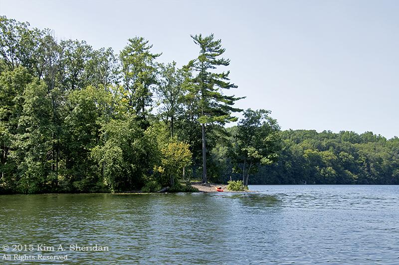Nockamixon State Park The Wild Edge