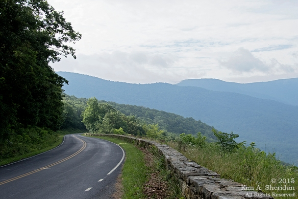 150704_VA Shenandoah National Park_0485 a