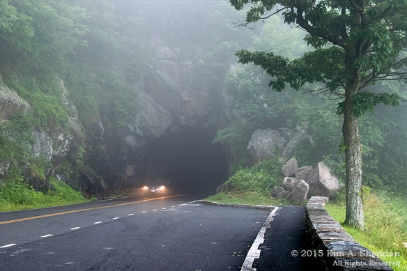 150704_VA Shenandoah National Park_0585acs
