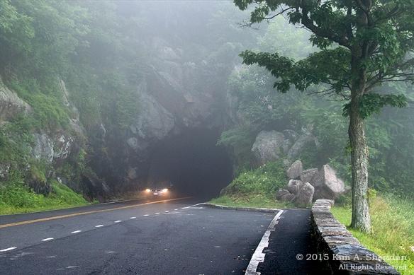 150704_VA Shenandoah National Park_0585acs
