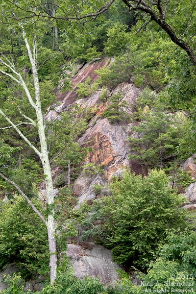 150704_VA Shenandoah National Park_0616acs